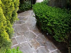 Pathways Pressure Cleaning