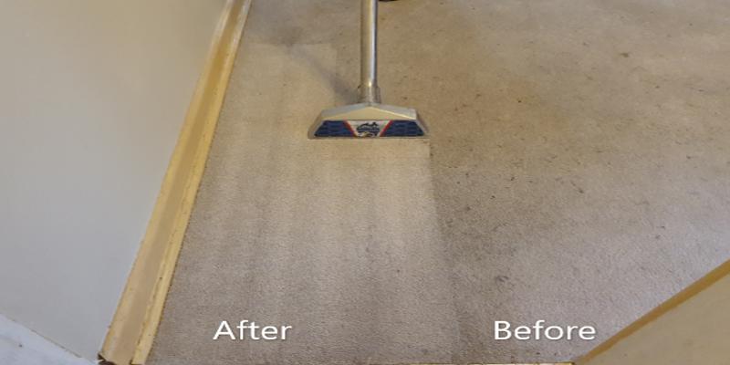 carpet_cleaning-comapre_2